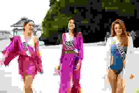 Chung kết Hoa hậu Hoàn vũ 2016 sẽ diễn ra vào mồng 3 Tết ở Philippinnes