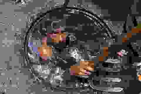 Những hình ảnh kinh khủng của nghề móc cống ở Bangladesh