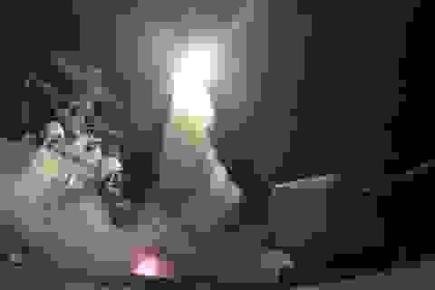 Syria tiết lộ lý do không bắn hạ tên lửa Mỹ