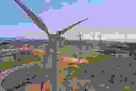 Năm 2050, 40% lượng điện Việt Nam có nguồn gốc từ năng lượng tái tạo