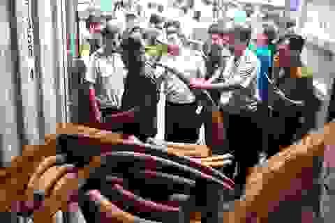 Động vật hoang dã trà trộn trong nông sản Việt xuất sang Trung Quốc