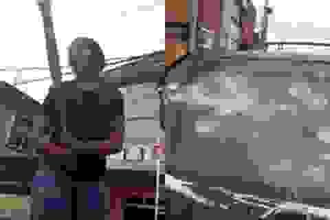 Đập nát xe của bạn trai vì phát hiện bị phản bội