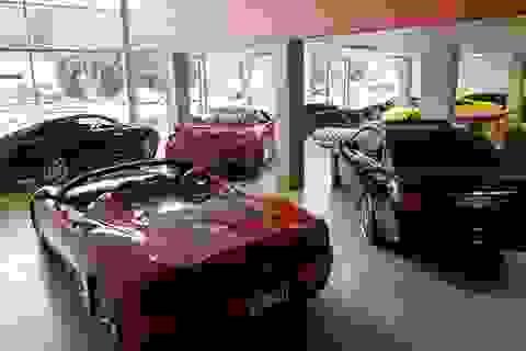 Australia cho phép người dân tự nhập khẩu ô tô