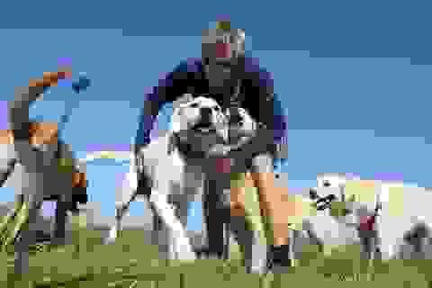 Sở hữu một con chó có thể kéo dài cuộc sống của bạn?