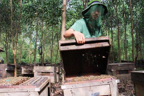 Huyện yêu cầu làm rõ vụ xã bắt dân nộp phí nuôi ong