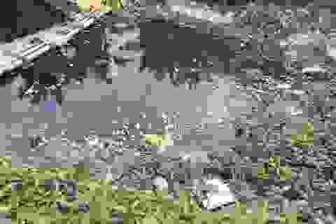 Nước sông chuyển màu đen, cá chết hàng loạt