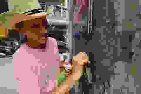 """Cựu binh Mỹ """"khoác"""" tấm áo mới cho các bức tường xấu xí ở Hà Nội"""