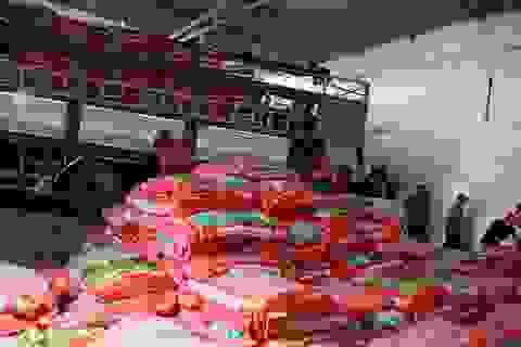 Phát hiện trên 100 tấn phân bón hết hạn sử dụng chuẩn bị đưa ra thị trường