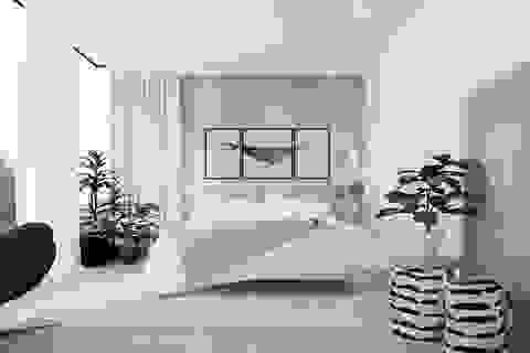 Gợi ý thiết kế phòng ngủ thanh lịch và đẳng cấp với gam màu trắng