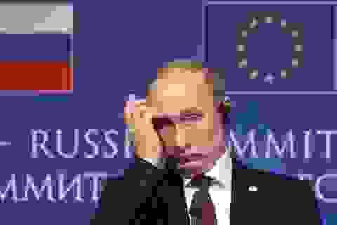 Phương Tây tiếp tục trừng phạt, Nga cấm vận ngược EU