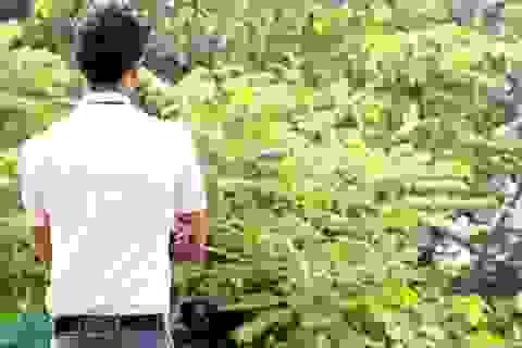Ấn Độ xôn xao vụ 2 học sinh nam nữ ôm nhau công khai bày tỏ tình cảm