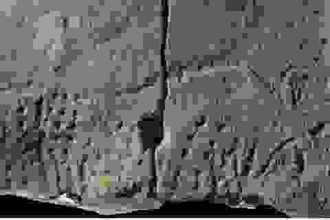 Bản điêu khắc sớm nhất của Pháp mô tả một con bò đã tuyệt chủng