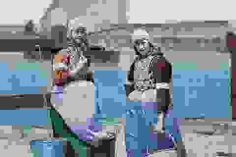 Bộ ảnh về đất nước Hà Lan những năm 1890s qua các tấm bưu thiếp