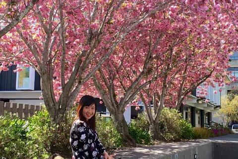 Bậc học tiến sỹ thu hút nghiên cứu sinh tới New Zealand