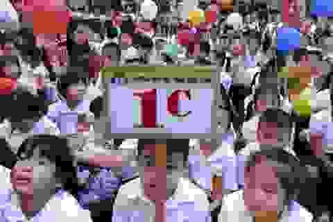 Hà Nội nghiêm cấm các trường tuyển sinh đầu cấp trước thời hạn