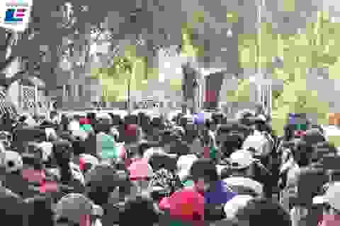 Nên chọn học tại Việt Nam hay du học: Kỳ 1 - Chơi vơi chọn ngành chọn nghề