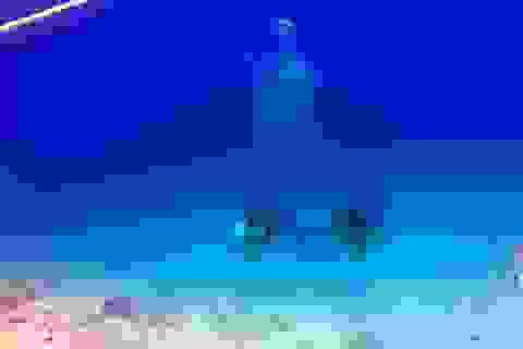 Tấm ảnh bọt khí hợp thành bóng ma sau lưng khách lặn khiến người xem rợn tóc gáy