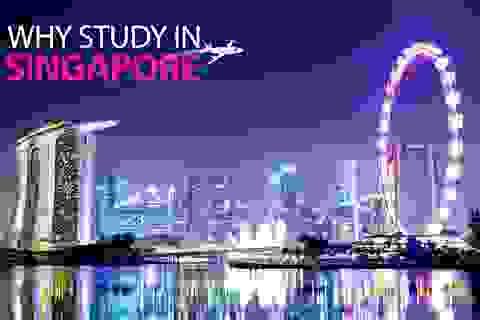 Hiểu hơn về giáo dục bậc Đại học tại Singapore và định hướng du học cho con