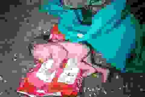 Phát hiện bé sơ sinh bị kiến bu đầy vì cha mẹ bỏ trong thùng rác