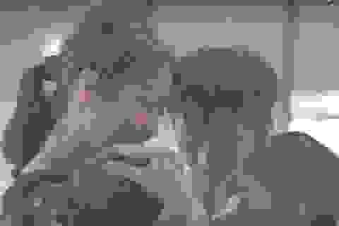 Ấm lòng với hạnh phúc giản dị của các em nhỏ kém may mắn tại Bến Tre
