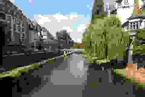 Câu chuyện Erasmus Mundus (kỳ 3): Thủ lĩnh ký túc