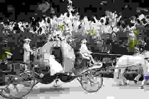 Đám cưới cổ tích có giá trên trời của tầng lớp siêu giàu