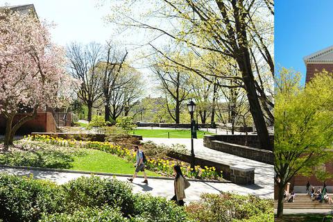 Coffee Talk - Học bổng 100% tại Đại học Manhattan, New York