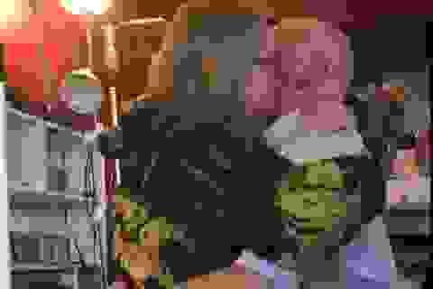 Sau 20 năm ly hôn, lại quỳ gối cầu hôn vợ cũ