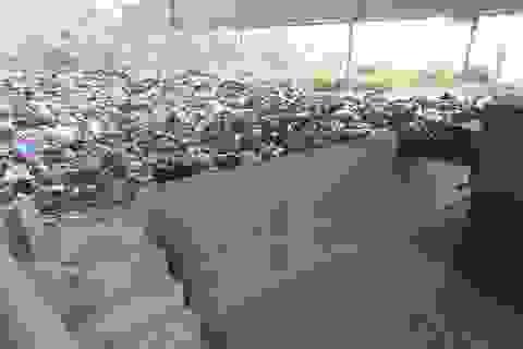Lò đốt rác tiền tỷ bỏ hoang, người dân khốn đốn vì ô nhiễm