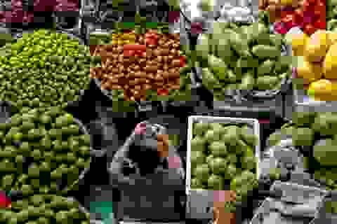 Nhập rau quả Thái tăng vọt, mỗi ngày chi hơn 28 tỷ đồng mua rau quả