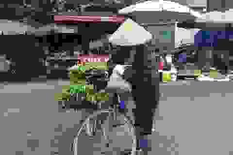 """Mưa liên tục, thực phẩm """"leo thang"""", rau mỗi ngày một giá"""