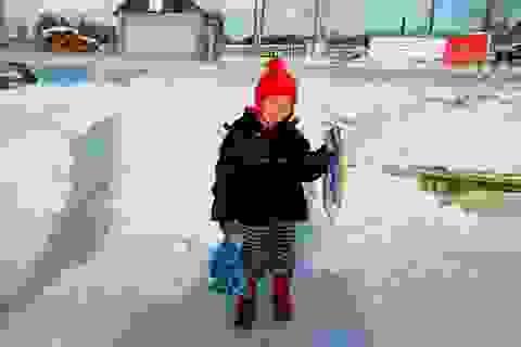 Bé 4 tuổi dũng cảm vượt sông băng giữa trời -24 độ C để tìm người cứu bà