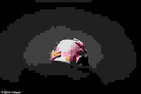 Phát hiện gen gây hội chứng stress sau sang chấn