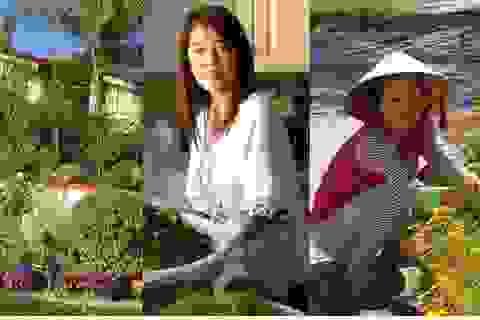 Chốn đi về ngập tràn sắc xanh của 3 sao Việt trên đất Mỹ