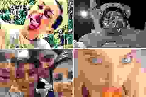 """""""Nghiện selfie"""" là một rối loạn tâm thần?"""