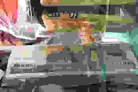Vận chuyển 8kg vàng và hơn nửa tỷ đồng vượt biên, người phụ nữ Campuchia lãnh án