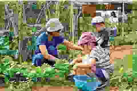 4 bước để mẹ dạy bé yêu thiên nhiên ngay tại nhà