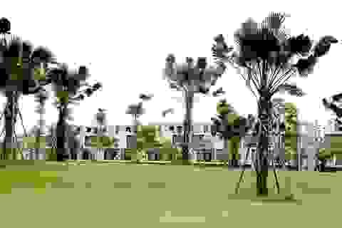 Lý do nào khiến các dự án đất nền tại phía Tây Hà Nội có giá bán ngày càng tăng?