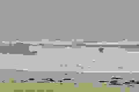3 người tử vong, mất tích tại Huế trước bão số 10