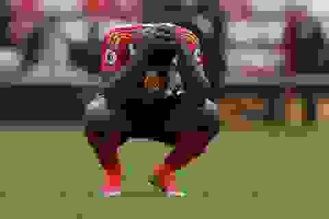 Xác định đội bóng đầu tiên xuống hạng ở Premier League