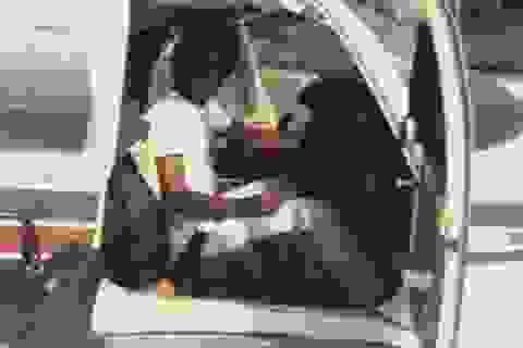 Phi công may mắn nhất thế giới, thoát chết sau 11 vụ tai nạn máy bay