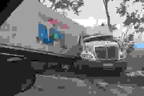 """Hàng cây ven đường """"cứu"""" chiếc xe tải khỏi lao xuống vực sâu"""