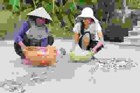 Băn khoăn đường đến giảng đường của nữ sinh nghèo đỗ ĐH Y dược Huế