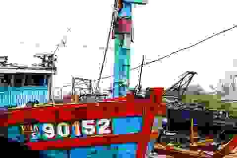 Đà Nẵng chọn địa điểm trưng bày tàu cá bị Trung Quốc đâm chìm