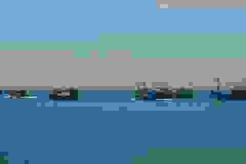 Bộ Nông nghiệp đề nghị các tỉnh thành động viên ngư dân bám biển