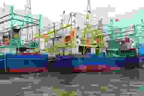 Bàn giao 8 tàu cá vỏ thép có radar, định vị toàn cầu cho ngư dân