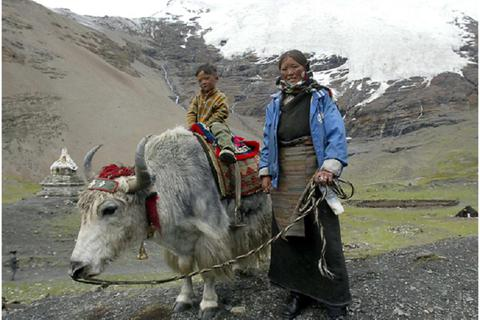 Khác biệt về gen giúp người Tây Tạng tồn tại được trên các vùng núi cao