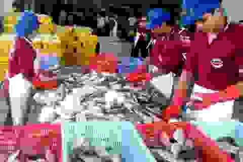 Thực phẩm tươi ngon xuất khẩu, loại kém chất lượng... dân ăn