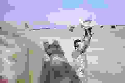 Thiết bị bay không người lái của IS có thể khủng bố châu Âu?
