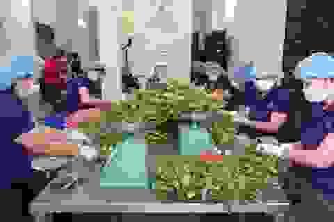 """TPHCM - Long An """"bắt tay"""" sản xuất thực phẩm sạch"""